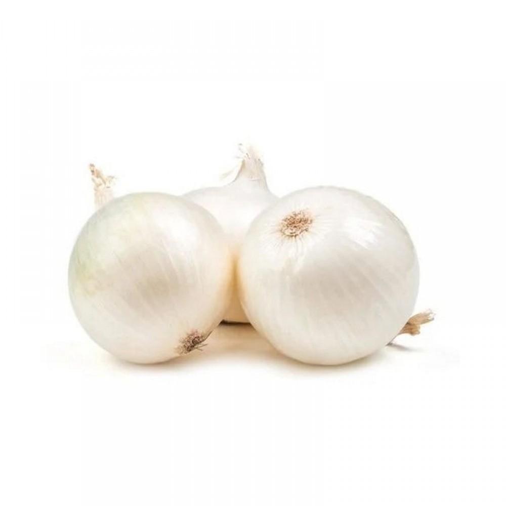 White Onion Fresh - Kilo