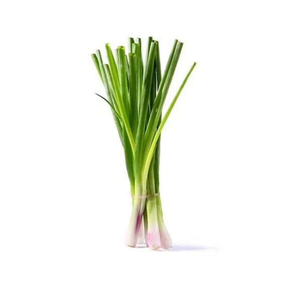 Green Onion Fresh - Pcs