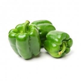 Green Pepper fresh - Kilo