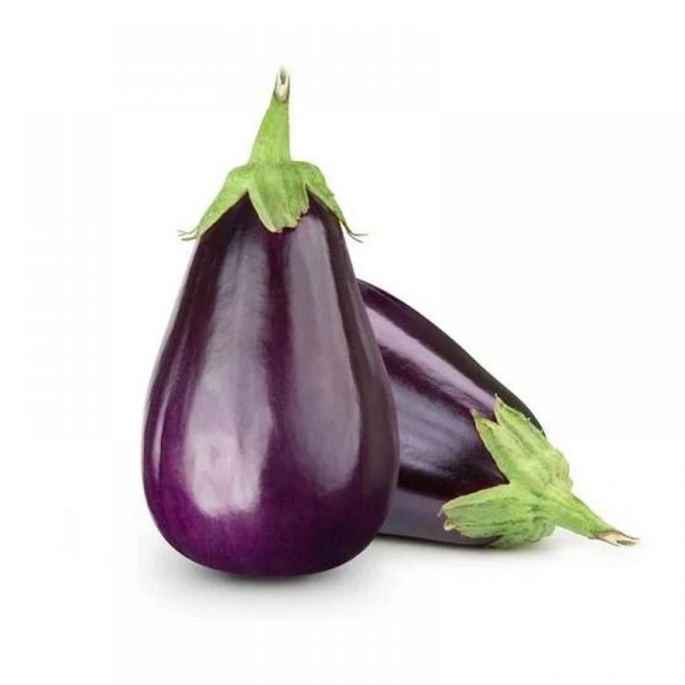 Fresh Eggplant - Kilo