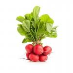 Radish fresh - Kilo
